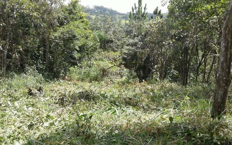 terreno, vale esmeralda- jarinu/sp