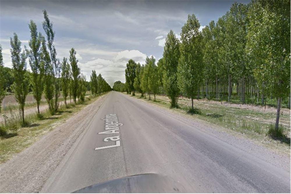 terreno valle de uco ubicación privilegiada 1 ha.