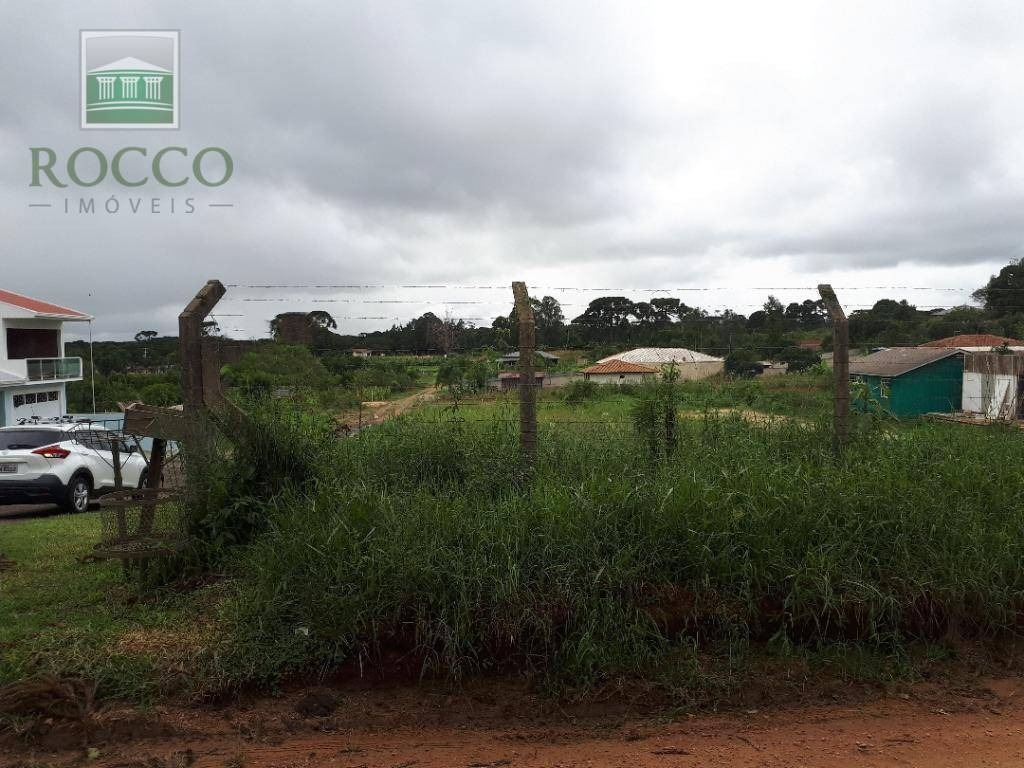 terreno à venda, 1000 m² por r$ 110.000 - campina do taquaral - são josé dos pinhais/paraná - te0040
