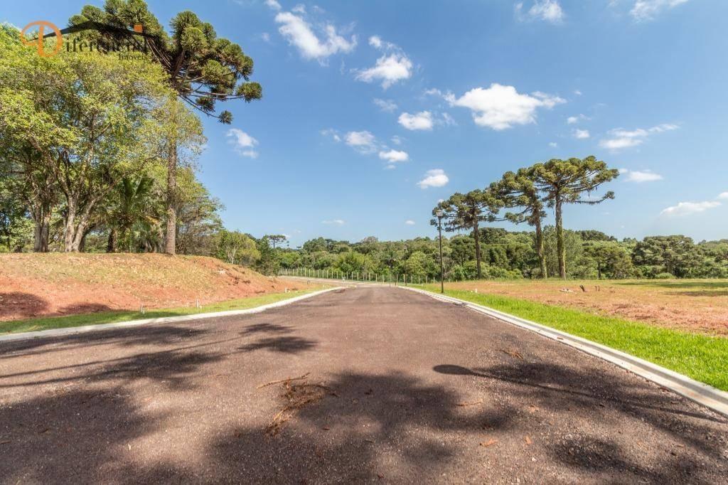 terreno à venda, 1115 m² por r$ 1.124.222 - augusta - curitiba/pr - te0135