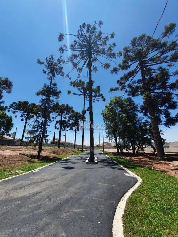 terreno à venda, 119 m² por r$ 181.500,00 - pinheirinho - curitiba/pr - te0129