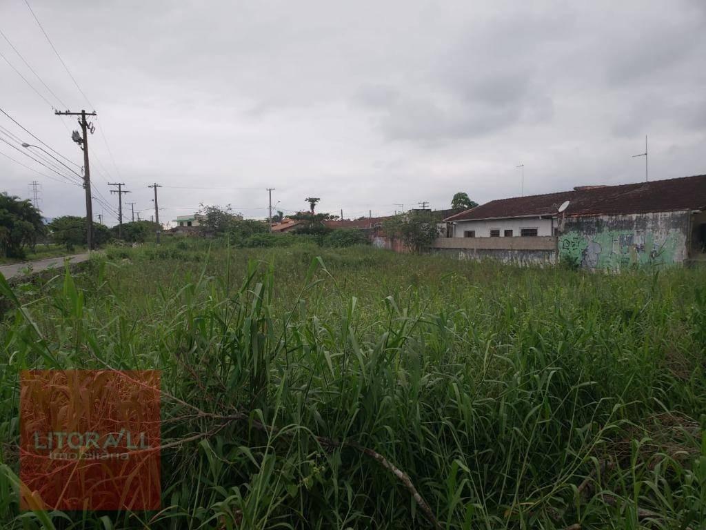 terreno à venda, 1326 m² por r$ 550.000 - agenor de campos - mongaguá/sp - te0295