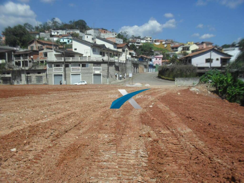 terreno à venda, 13888 m² por r$ 1.380.000,00 - jardim luso - ribeirão pires/sp - te0207