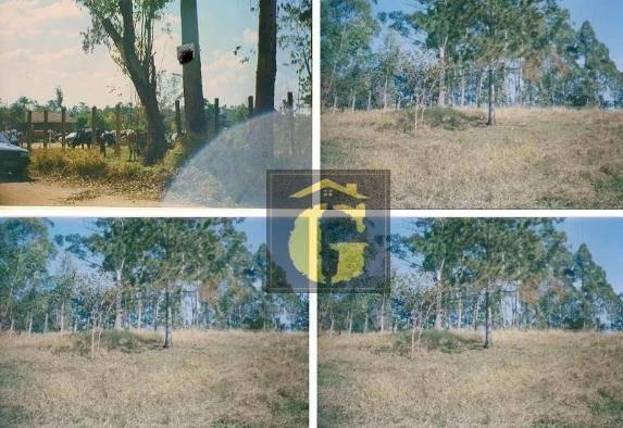 terreno à venda, 1750 m² por r$ 100.000 - campo largo - atibaia/sp - te0035