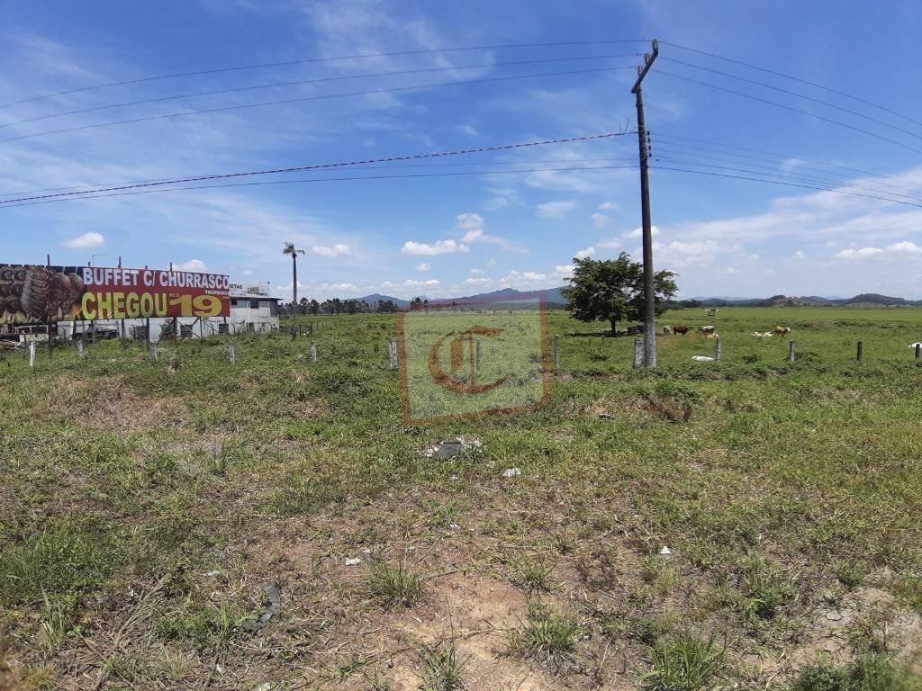 terreno à venda, 18279 m² por r$ 3.816.000 - br 101, 579 - penha/sc - te0017