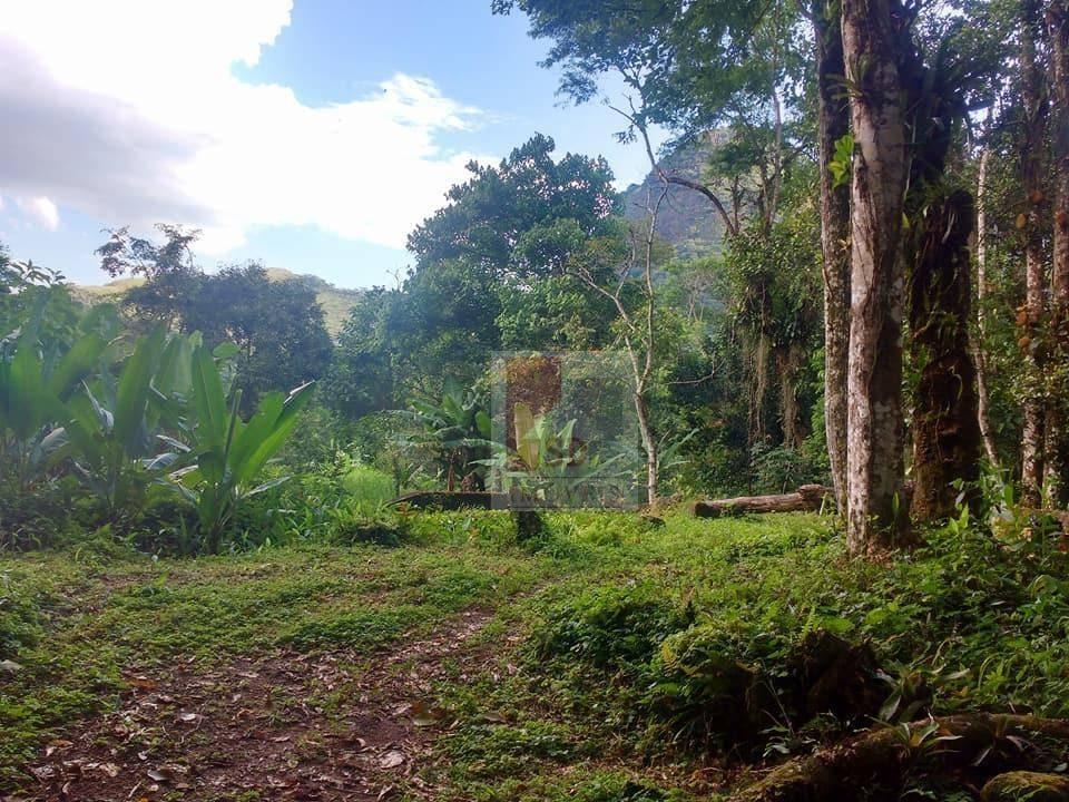 terreno à venda, 192000 m² por r$ 750.000,00 - pico (santo aleixo) - magé/rj - te0321