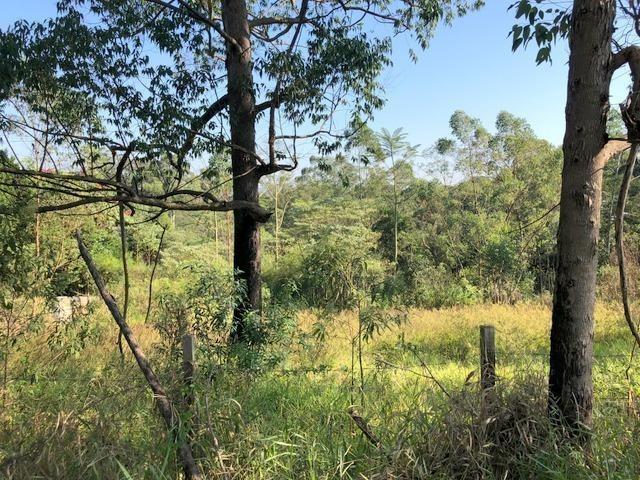 terreno à venda, 2709 m² por r$ 1.200.000,00 - paisagem renoir ii - cotia/sp - te0212