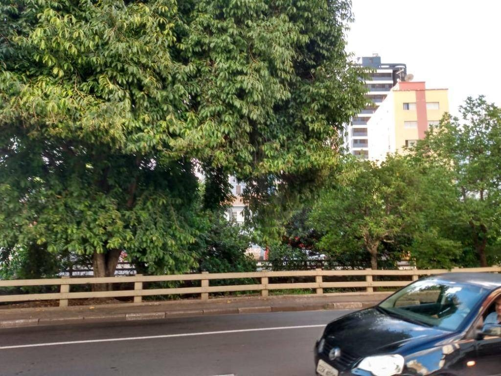 terreno à venda, 380 m² por r$ 980.000 - cambuí - campinas/sp - te4512