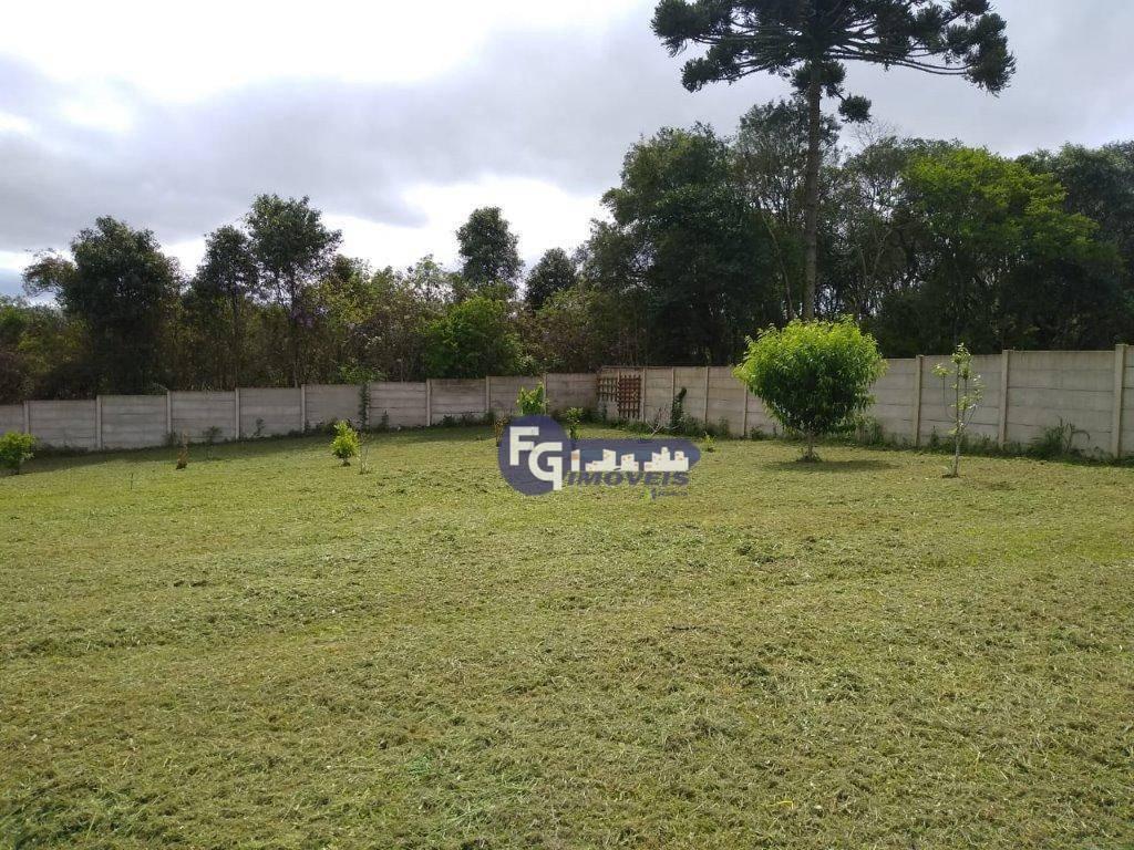 terreno à venda, 4450 m² por r$ 449.000,00 - rio pequeno - são josé dos pinhais/pr - te0046
