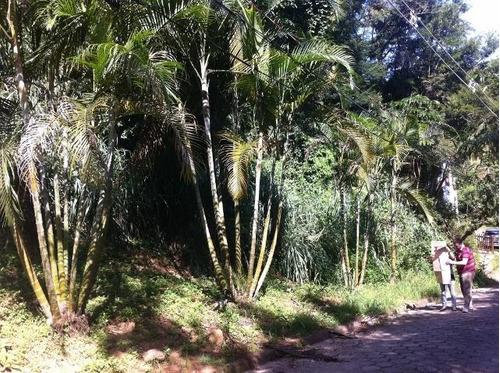 terreno à venda, 4600 m² por r$ 700.000 - barra velha - ilhabela/sp - te0011