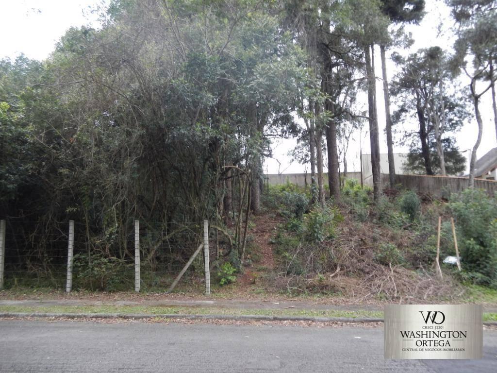 terreno à venda, 600 m² por r$ 480.000,00 - aristocrata - são josé dos pinhais/pr - te0058