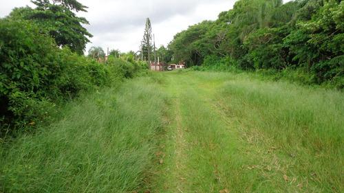 terreno à venda a 300 m da praia em itanhaém. ref. 256/243