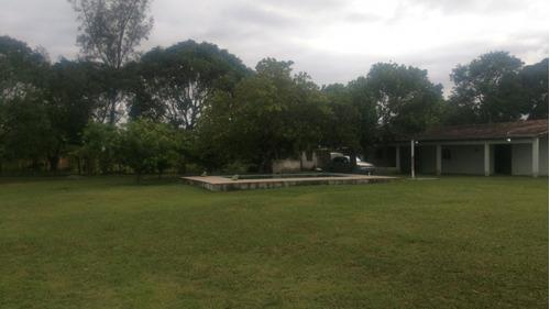 terreno - venda - araruama - rj - picada - 737