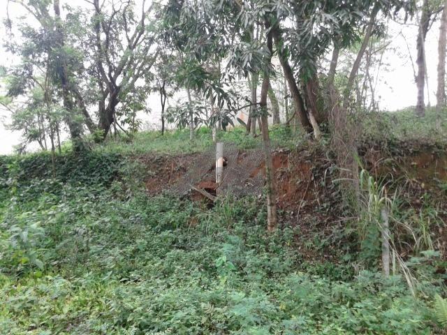 terreno à venda em bairro das palmeiras - te004767