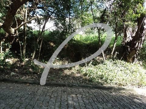 terreno à venda em bairro das palmeiras - te163048