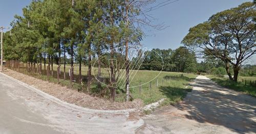terreno à venda em chácara monte alegre - te226902