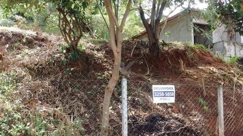 terreno à venda em jardim atibaia (sousas) - te121306