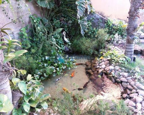 terreno à venda em jardim chapadao - te049815