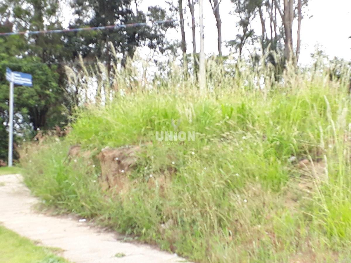 terreno à venda em jardim das videiras - te002858