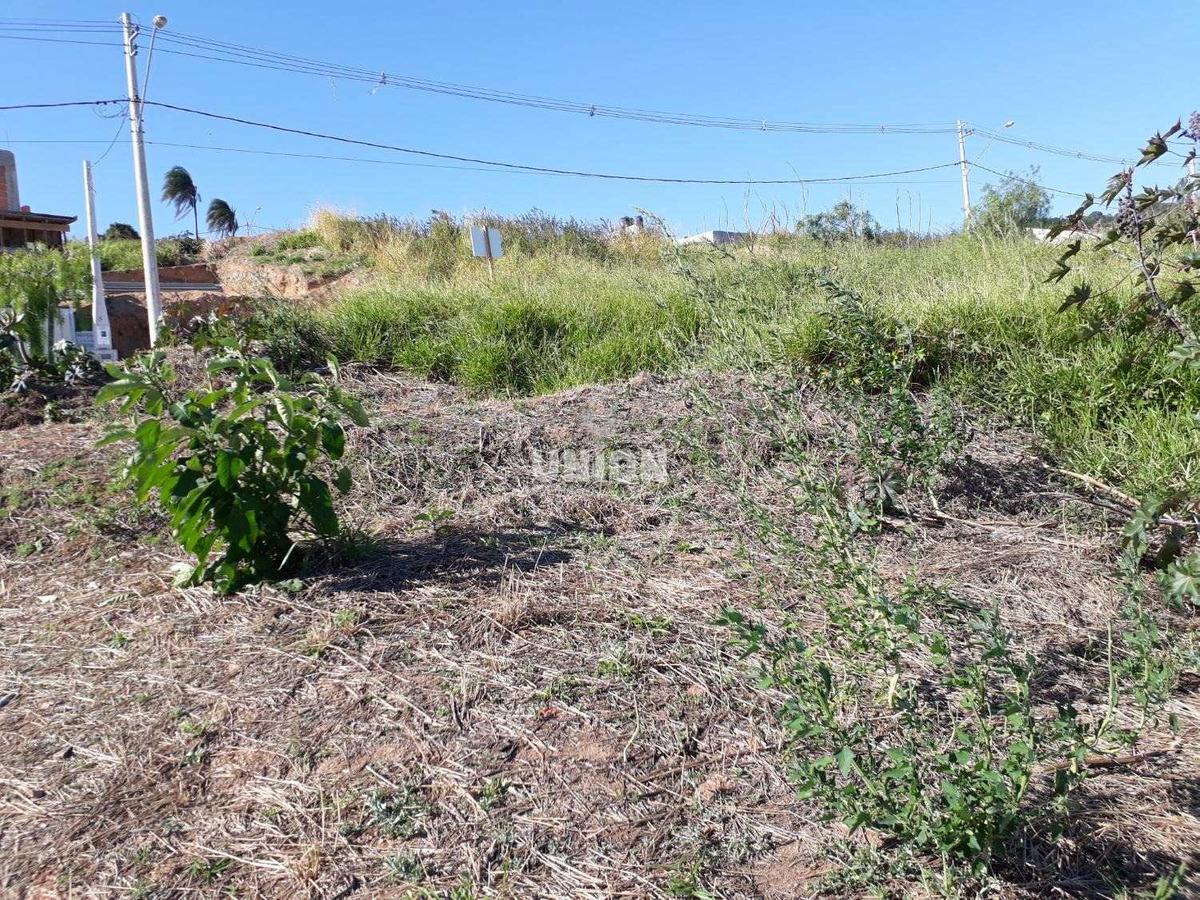 terreno à venda em jardim das videiras - te003364