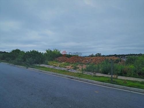 terreno à venda em jardim das videiras - te006853