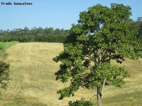 terreno à venda em jardim martinelli (sousas) - te121406