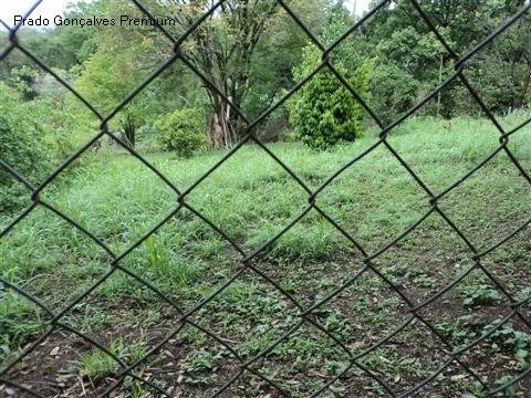 terreno à venda em jardim nova morada - te161607