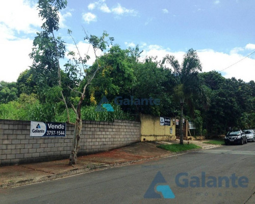 terreno à venda em jardim sao goncalo - te050354