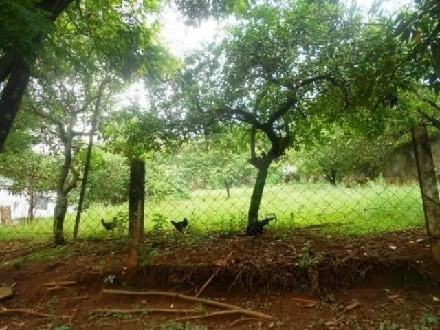 terreno à venda em mansões santo antônio - te213792