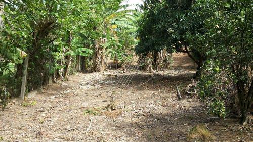 terreno à venda em parque jatibaia (sousas) - te225127