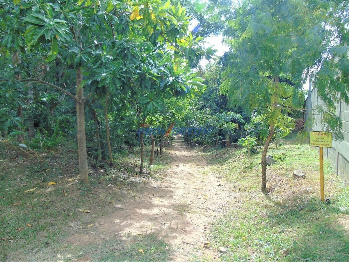 terreno à venda em parque prado - te207633