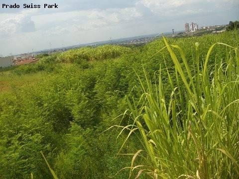 terreno à venda em parque taquaral - te161822