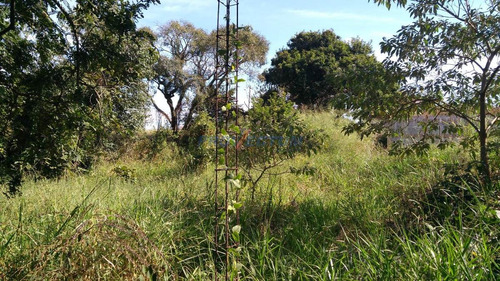 terreno à venda em pinheiro - te230490