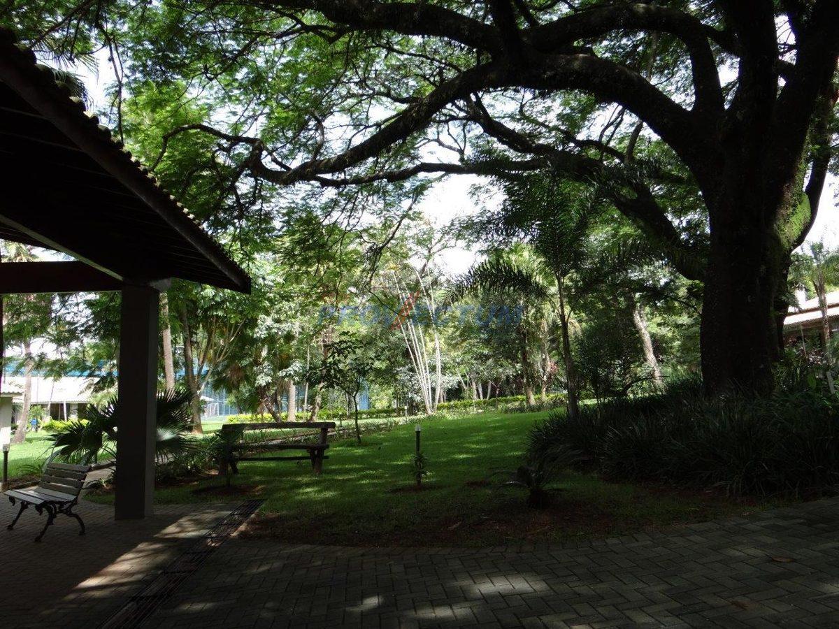 terreno à venda em reserva colonial - te189901