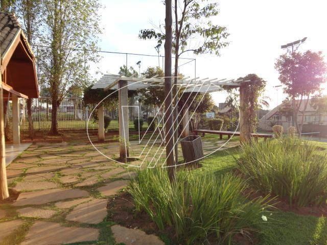 terreno à venda em swiss park - te202665