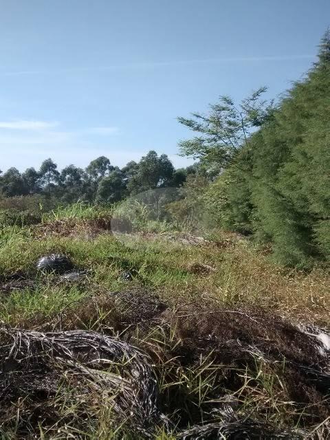 terreno à venda em vale verde - te181777