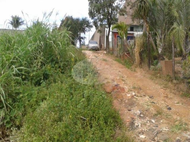 terreno à venda em vila brandina - te199092