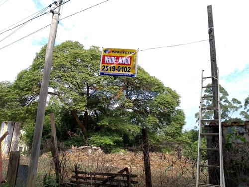 terreno à venda em vila ipe - te195433