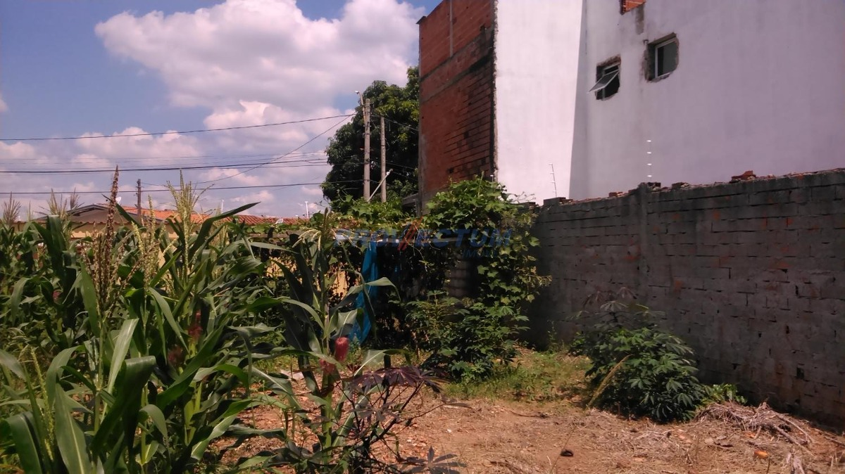 terreno à venda em vila nogueira - te234406