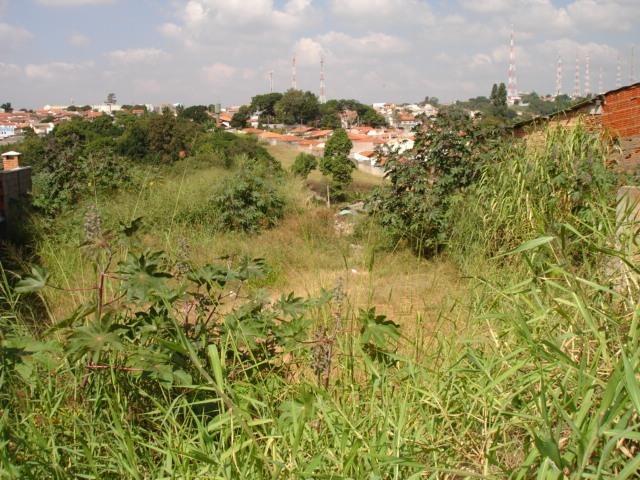 terreno à venda em vila santa odila - te245944