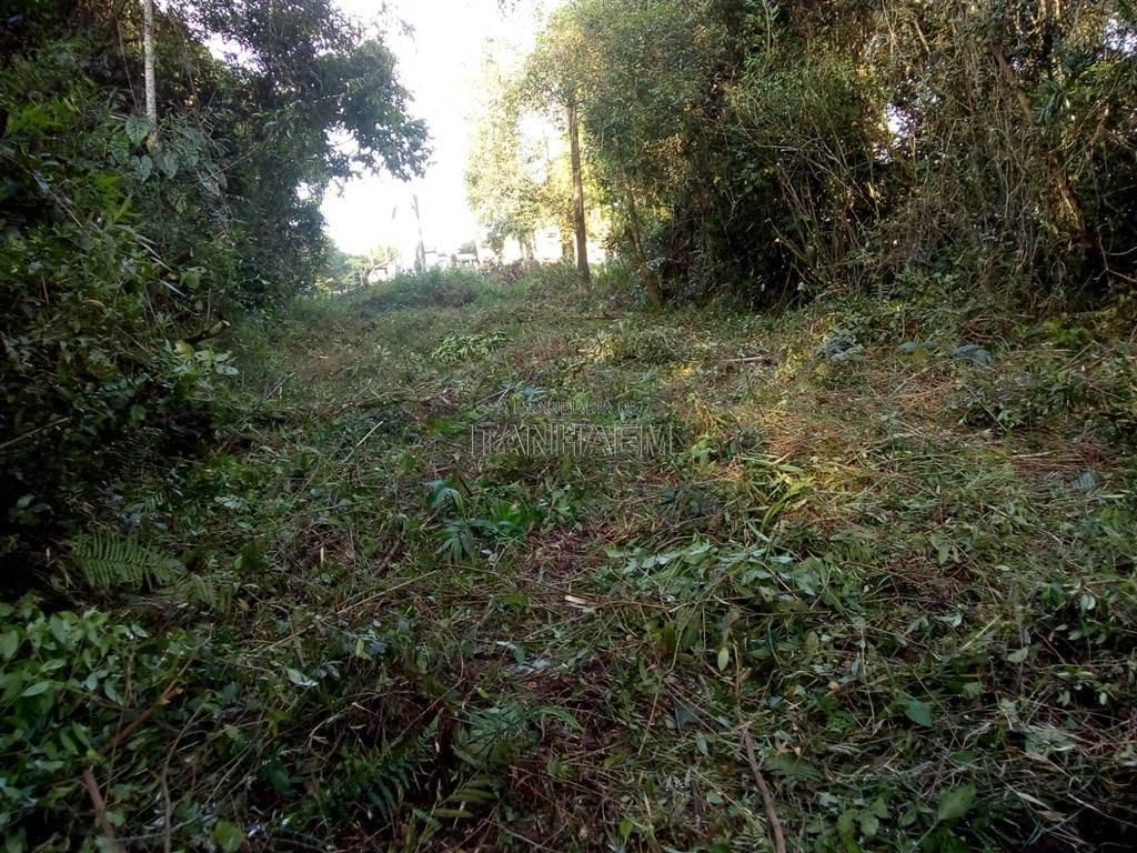 terreno - venda - jardim coronel - itanhaém - sue5