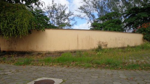 terreno à venda  murado 6 lotes.  ref. 484 e 303 cris