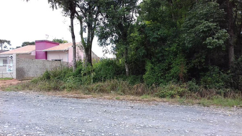 terreno à venda no bairro campo d'água verde em canoinhas-sc