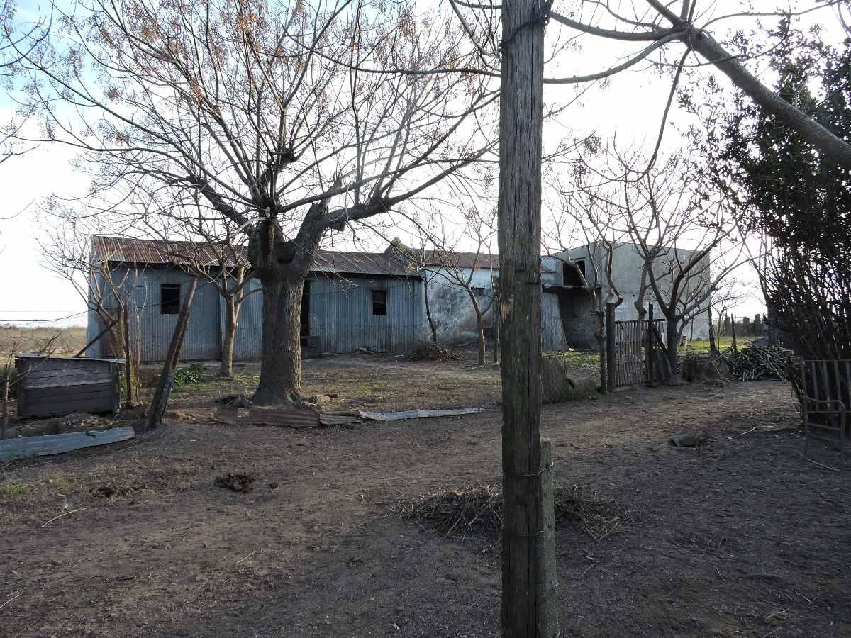 terreno vendo  santa lucia 7 has suburbana  harretche