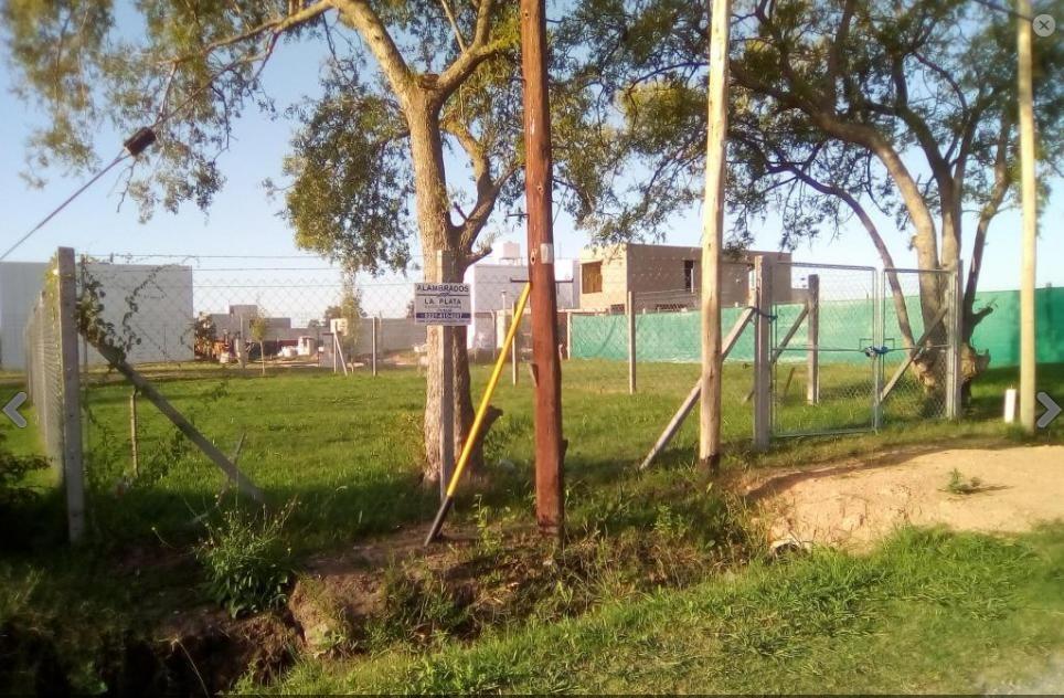 terreno  venta 10 x 25 mts -250 mts 2 -barrio el roble- la plata