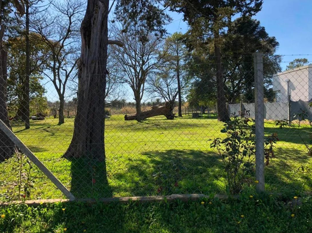terreno  venta 18,5 x 67 mts  -  1239mts 2   - villa elvira