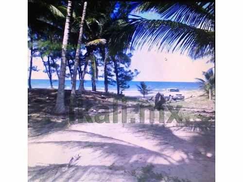 terreno venta 6732.60 m² en la playa norte tuxpan veracruz, frente al mar, se encuentra ubicado en la playa norte entre barra galindo y la termoeléctrica, cuenta con 6,732.60 m² de terreno del mar a