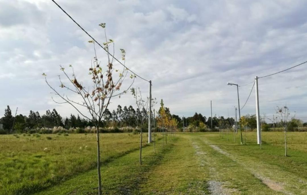 terreno venta  barrio la cañada -34 x 69,50 mts - city bell