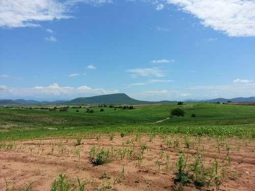 terreno venta cerca de san ignacio