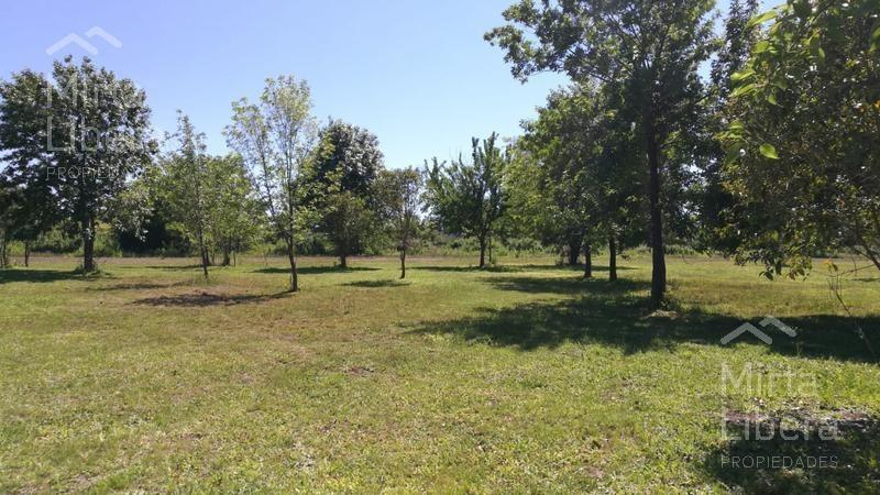 terreno venta - empalme magdalena por acceso olmos  y  calle 111- magdalena